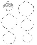 Coloring page End the drawing of shells