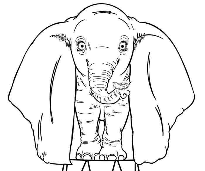 Dibujo Para Colorear Dumbo Dumbo 2019 Tim Burton 9