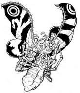 Dibujo para colorear Mothra y Kumonga