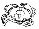 Malebøger Krabbe