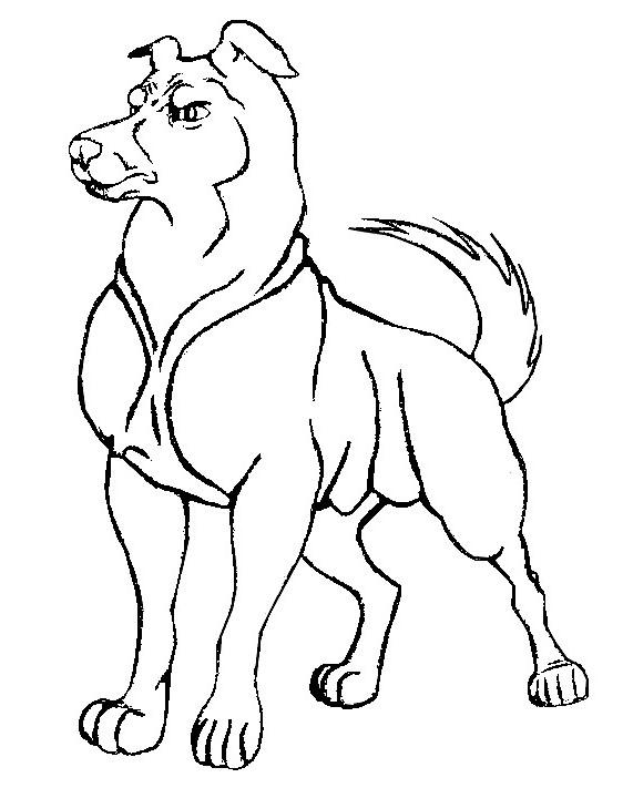 Malvorlagen Hunde 22