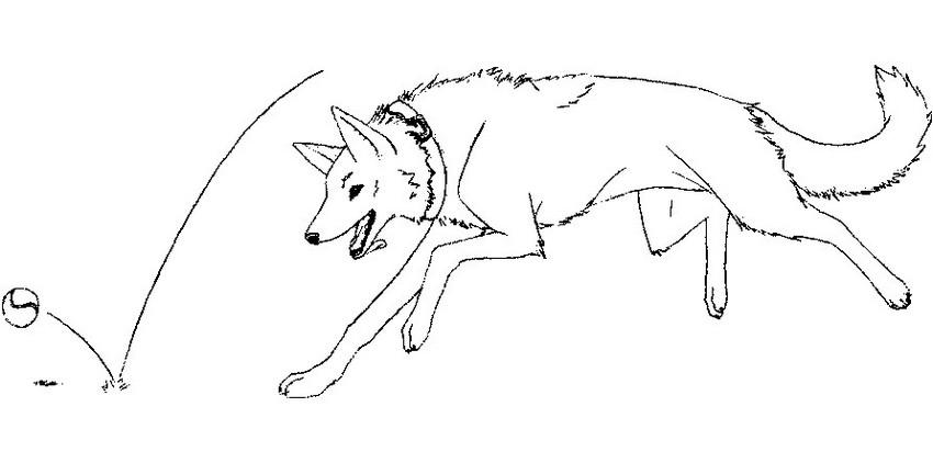 Kleurplaten Van Honden.Kleurplaat Honden 27