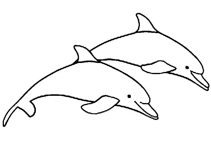 Malvorlagen Delfin 2