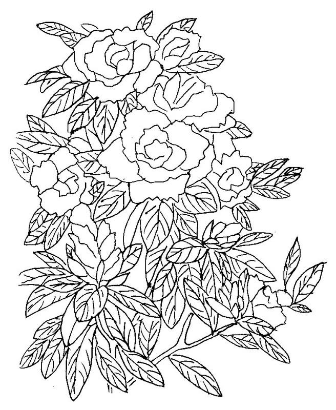 Disegno Da Colorare Fiori 4
