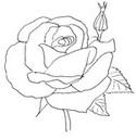 Tulostakaa värityskuvia Ruusu