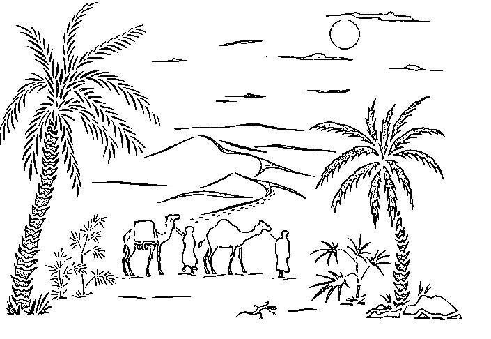 Dibujo para colorear Playa Palmeras 4