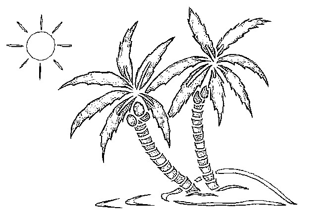 coloring page beach palm trees