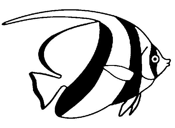 Famoso Disegno da colorare Pesce d'aprile 8 YC14
