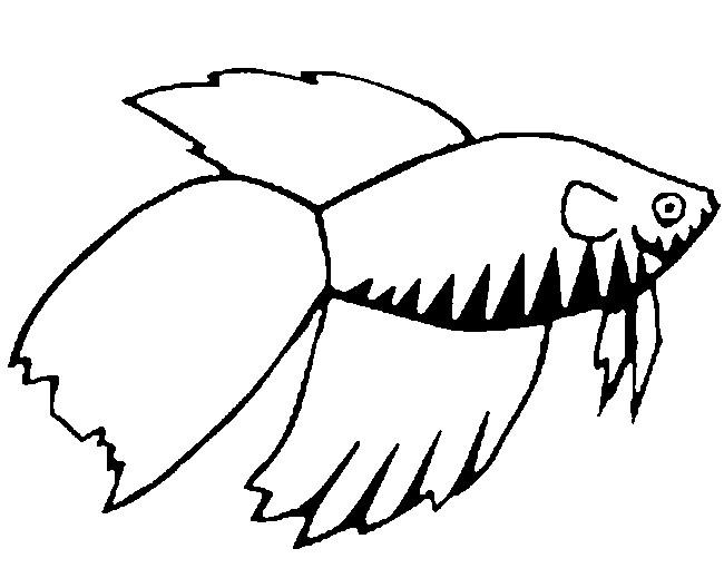 Disegno da colorare pesce d 39 aprile 9 for Disegni da colorare pesce d aprile