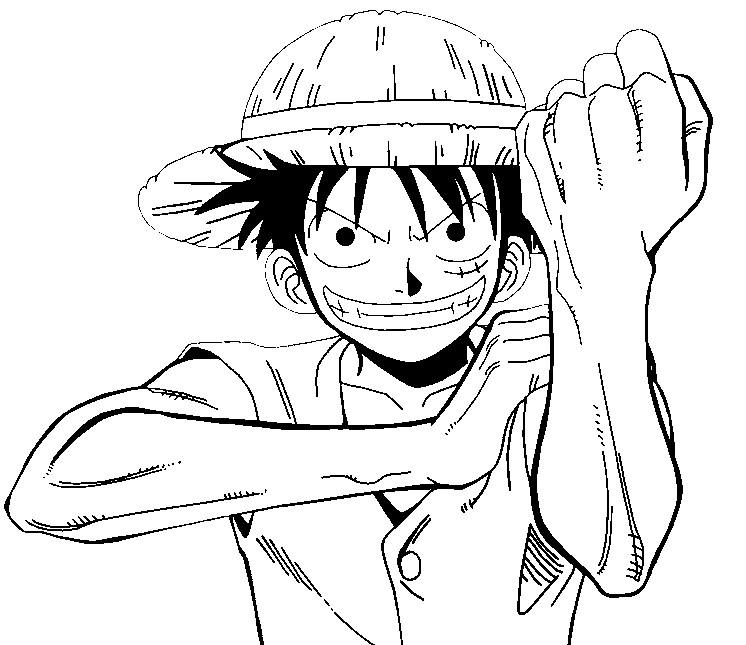 Disegno Da Colorare One Piece 12