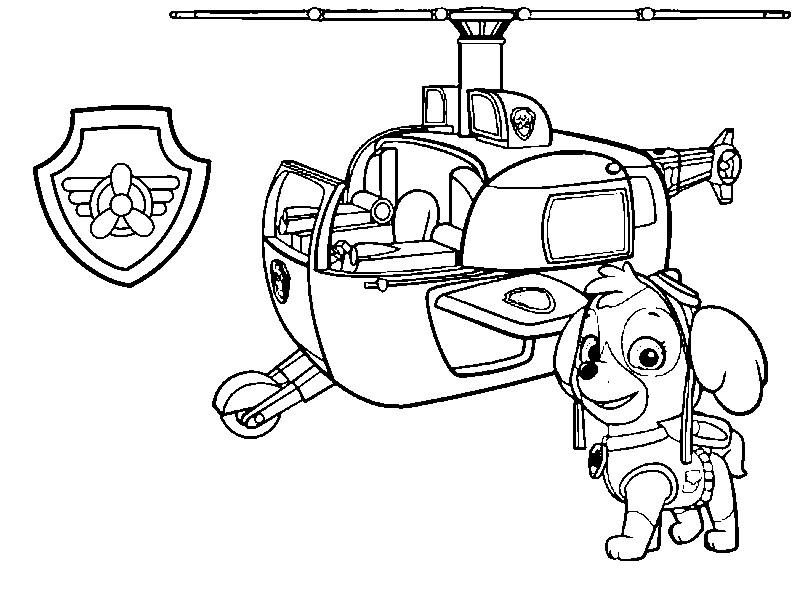 Malvorlagen Paw Patrol : Stella, seine Hubschrauber und Abzeichen 7