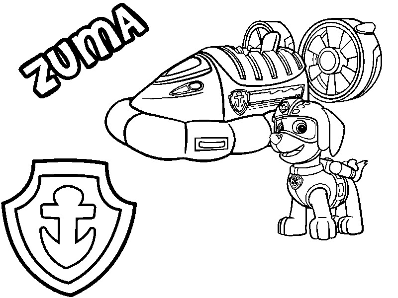 Coloring Pages Paw Patrol Zuma : Coloring page paw patrol zuma his hovercraft and badge