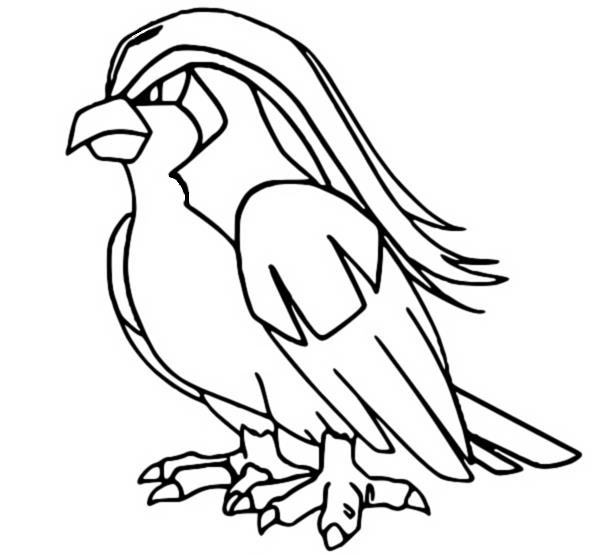 Coloring Pages Pokemon Pidgeot Drawings Pokemon
