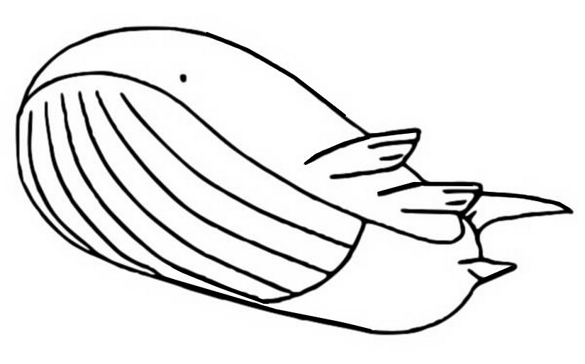 mega wailord coloring pages - photo#4