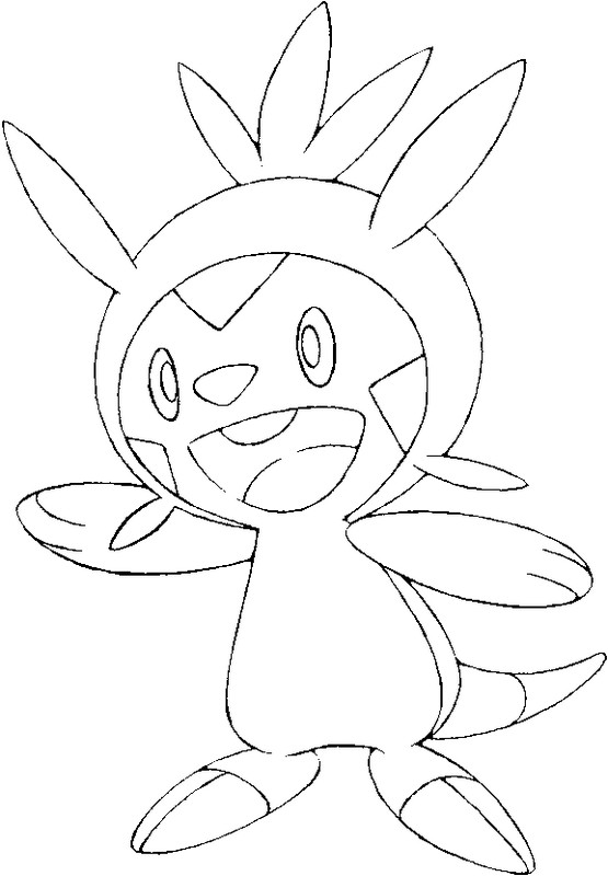 coloring pages chespin drawings